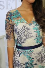 Blue Mesh Floral Skater Dress