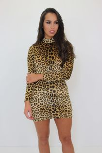 Leopard Print Long Sleeve Mini Dress